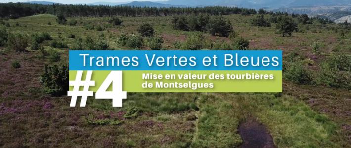 «La vie au cœur des territoires» – Épisode 4 : Les tourbières de Montselgues